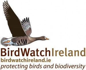 birdwatch logo