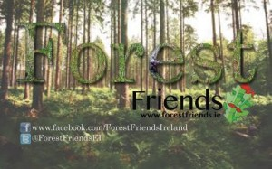 forest friends 3